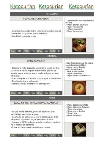 dieta cetosisgenica pdf ejemplo