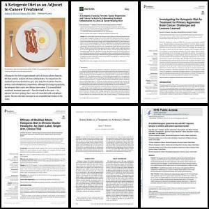 Artículos Investigación Cetogénica